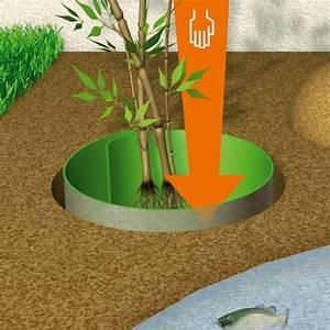 Barrière Anti Rhizome Castorama : votre barri re anti racine et anti rhizome 70 cm sp ciale ~ Dailycaller-alerts.com Idées de Décoration