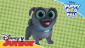 Puppy Dog Pals | Introducing Bingo! | Official Disney ...