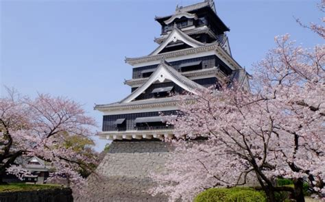 Kumamoto Castle  The Artistic Beauty And Its Rich History