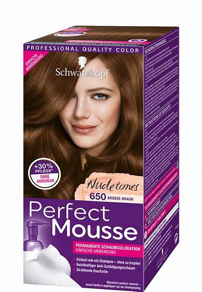 Haarfarbe Auffrischen Braun Bronze Leicht Gemacht Mousse