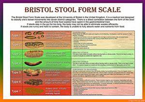 Usd To Lkr Chart Bristol Stool Scale