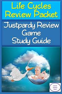 Life Cycles Review Packet  Justpardy Review Game   Study