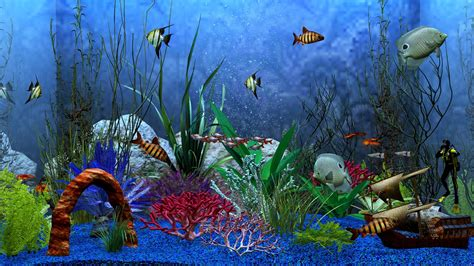aquarium decor de fond 1920x1080 aquarium view desktop pc and mac wallpaper