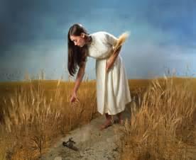 Define Biblical Threshing Floor by Ruth The Scarlet Thread