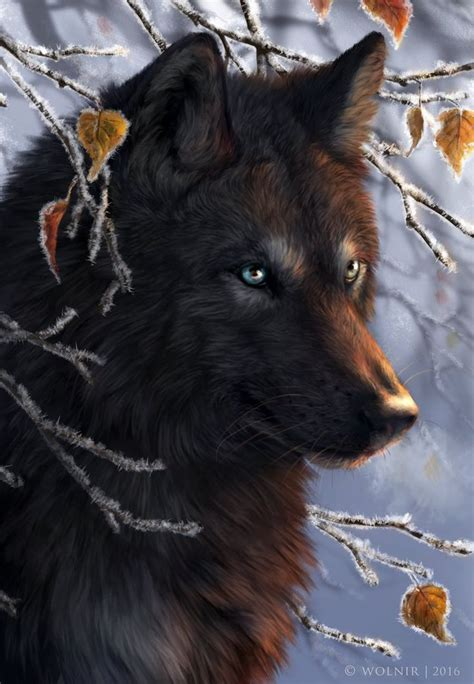 wolf drawings ideas  pinterest dog drawing