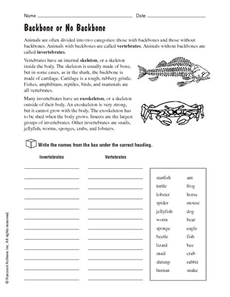 animals without backbones worksheets