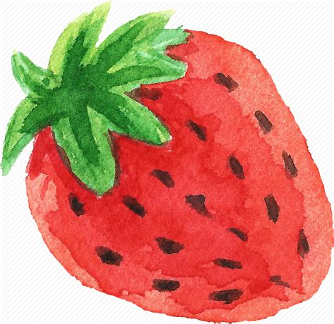 cuisine fast food cuisine food fruit fruits strawberry watercolor