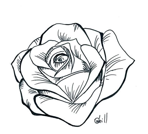 rose drawing stencil  getdrawings