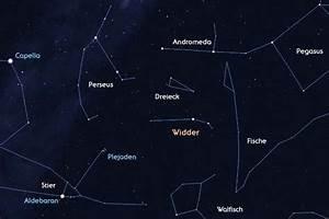 Widder Und Widder : widder astrokramkiste ~ Orissabook.com Haus und Dekorationen