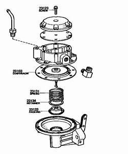 Oil Leak   Fuel Pump