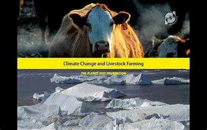 Climate Campaigns Change Livestock Slideshow Archive Farming