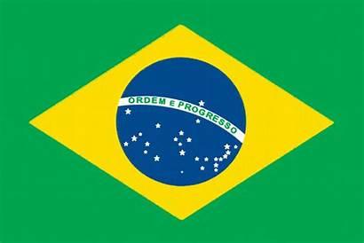 Flags Flag Unique International Brazil Colors Countries
