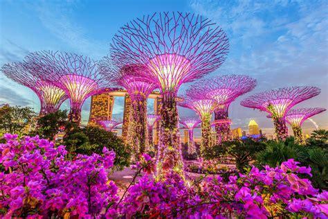 Botanischer Garten Singapur Bilder by Alle Singapur Tipps Auf Einen Blick Urlaubsguru De
