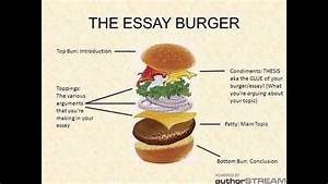 Sweet Essays Tip 1  General Structure Of An Essay