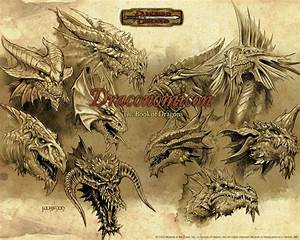 20 best images about Dragons on Pinterest | Dragon sketch ...