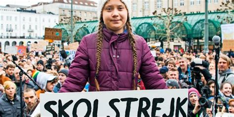 """Fridays for future (fff) is a global social movement based on pupils and students who are committed to comprehensive, fast, and efficient climate protection measures in order to meet the 1.5. """"Fridays for Future"""": Auch Peiner Schüler machen mit"""