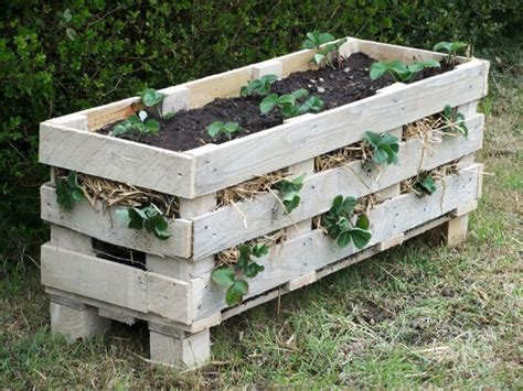 Ideas Using Pallets by 25 Diy Ideas Using Pallets For Raised Garden Beds Snappy