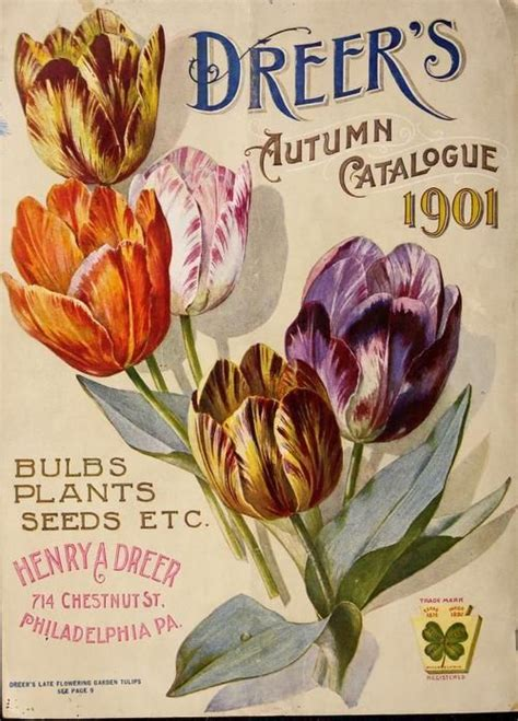 75 best seed packets and catalogs images on