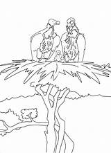 Albatross Coloring Moms Pages Coloringbay sketch template