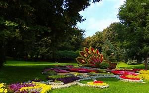 Garten Blumen Bilder : blumen pfau garten b ume hintergrundbilder blumen pfau garten b ume frei fotos ~ Whattoseeinmadrid.com Haus und Dekorationen