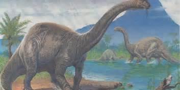 japan earrings brontosaurus dinosaur could make a thundering comeback