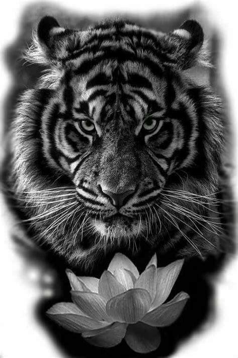 15 Most Amazing Tiger Tattoos | Tijger tatoeage ontwerp, Tijgertatoeages, Dierentatoeages
