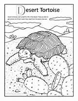 Desert Coloring Pages Tortoise Print Arizona Sulcata Coloringtop sketch template