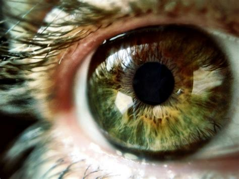 google patents  eye implant  technology chronicles