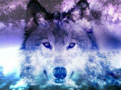 Galaxy Animal Wallpaper - wolf galaxy galaxy animals and other galaxy stuff