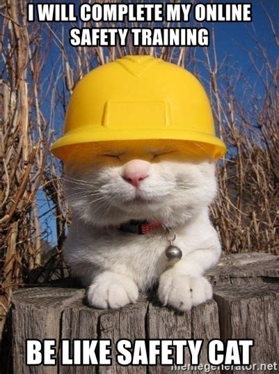 Health And Safety Meme - i will complete my online safety training be like safety cat health and safety cat meme