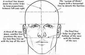 Related Keywords & Suggestions for human face proportions