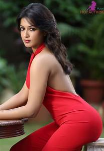 Tamil and Telugu Actress Hot Photos HD Bikini Images Gallery