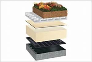 Extensive Dachbegrünung Aufbau : aufbau auf beton flachdachsysteml sungen ~ Whattoseeinmadrid.com Haus und Dekorationen