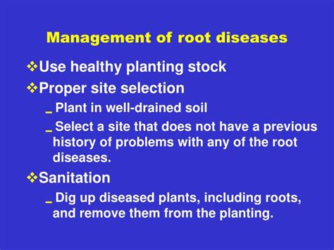 Ppt  Plant Health Management For Backyard Bramble