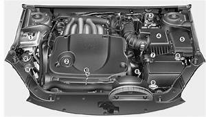 Engine Compartment - Maintenance