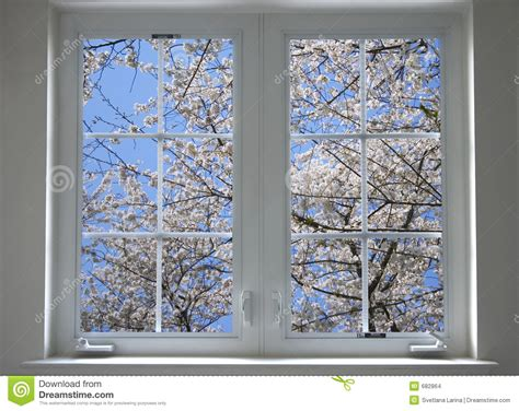 spring window stock photo image  home garden painted