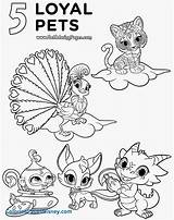 Shine Shimmer Coloring Pages Nickelodeon Pets Nick Jr Christmas Printable Loyal Sheets Print Getcolorings Collection Highest Cheap Leah Getcoloringpages Rocks sketch template
