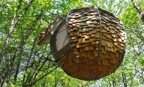 chambre dans les arbres cabane dans les arbres bretagne cabane perchée morbihan
