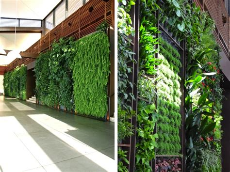 Sultan Ibrahim Green Wall  Green Prophet