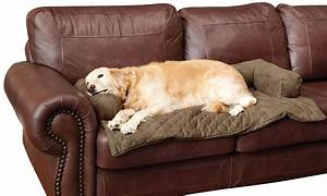 new bolstered furniture covers for pets provide protection With furniture covers petsmart