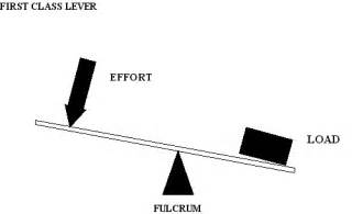 First Class Lever Drawing