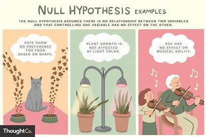 Hypothesis Null Examples Variables Thoughtco Variable Plant