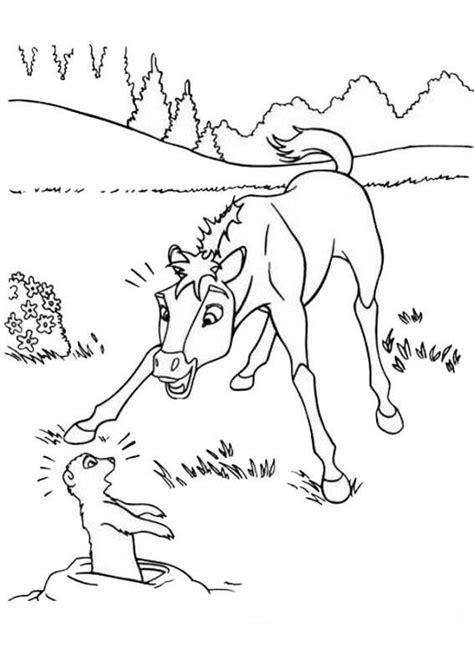 immagini di cavalli da colorare per bambini disegni da colorare di cavalli