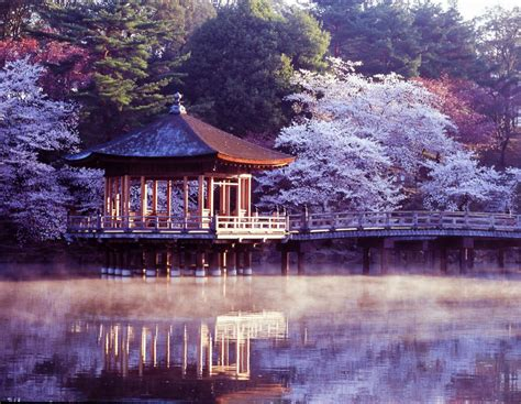 The official site of jnto is your ultimate japan guide with tourist information for tokyo, kyoto, osaka, hiroshima, hokkaido, and other top japan holiday destinations. Best Hostels in Nara, Japan for Solo Travellers ...