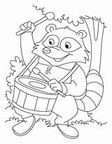 Coloring Raccoon Drum Playing Pages sketch template