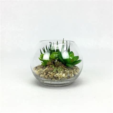 แก้วพืชปลอม สวนจิ๋ว สวนโหลแก้ว ว่านหางจระเข้ปลอม,กุหลาบหิน ...