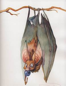 Commission 3 -- Fruit Bat by nebulafire on DeviantArt