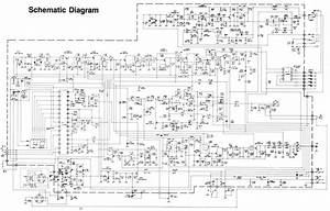 Forest River Wildcat Wiring Diagram