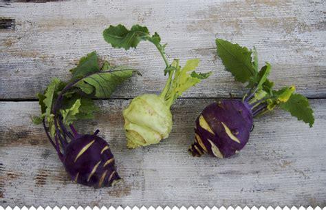 cuisiner choux bruxelles chou à feuilles racine fleur cultiver récolter