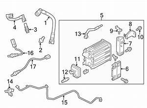 Ford F-150 Vapor Canister Purge Solenoid  Emission  Engine  Control